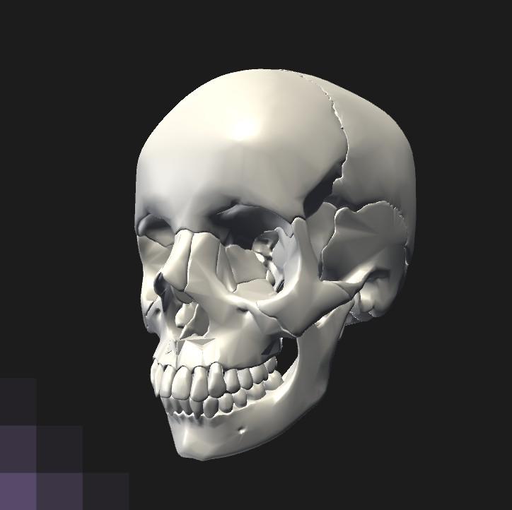 Singurul os mobil al craniului este